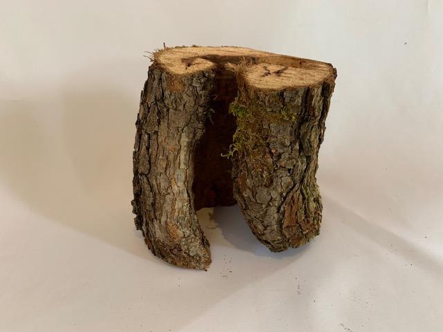 c-wood-n-052329