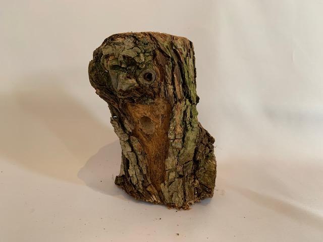 c-wood-L-071506