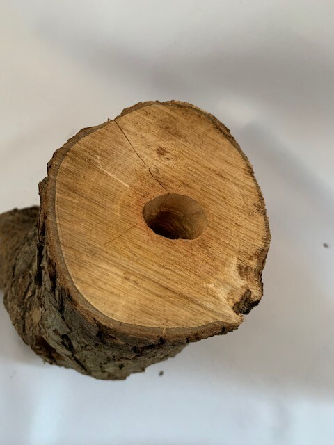 c-wood-L-06121626