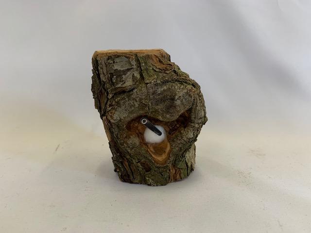 c-wood-m06141750