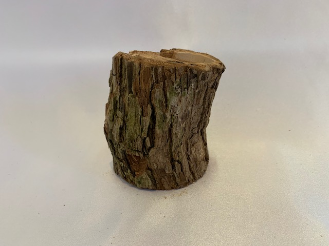 c-wood-m06171749