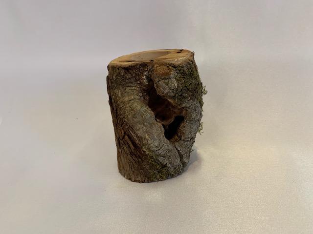 c-wood-m171809