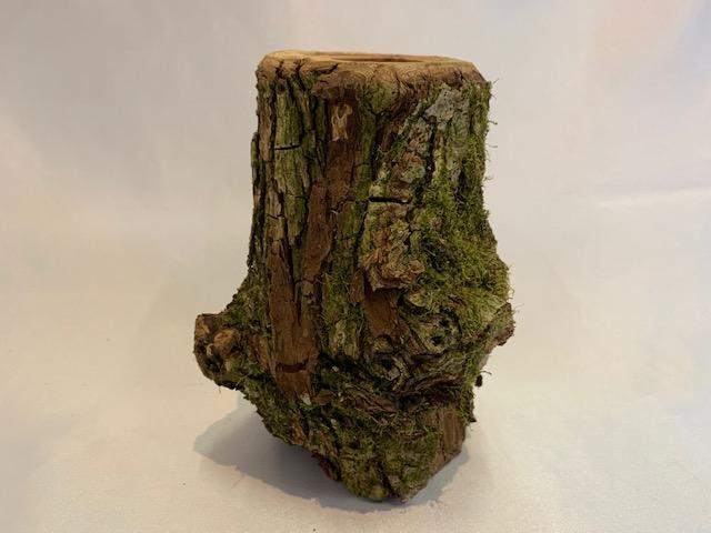 c-wood-L-171851
