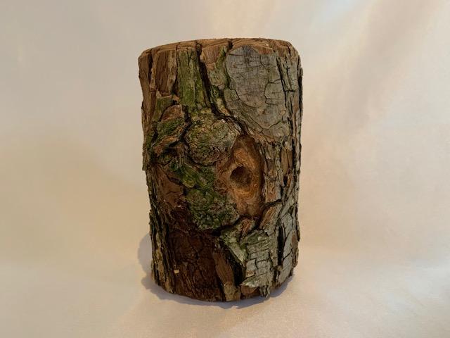 c-wood-L-181022