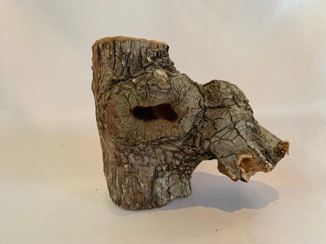 c-wood-L-6291549