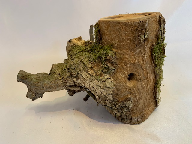 c-wood-k-6291702