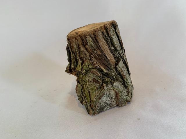 c-wood-m7021117