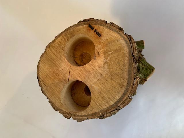 c-wood-L-7021645
