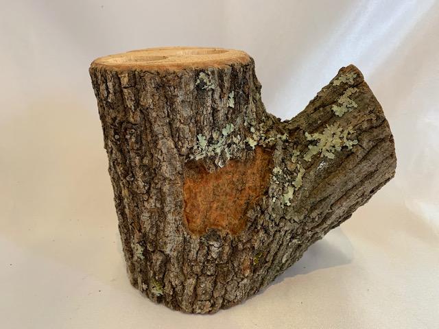c-wood-L-7021713