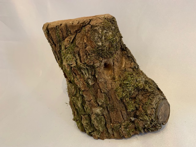 c-wood-L-7021745