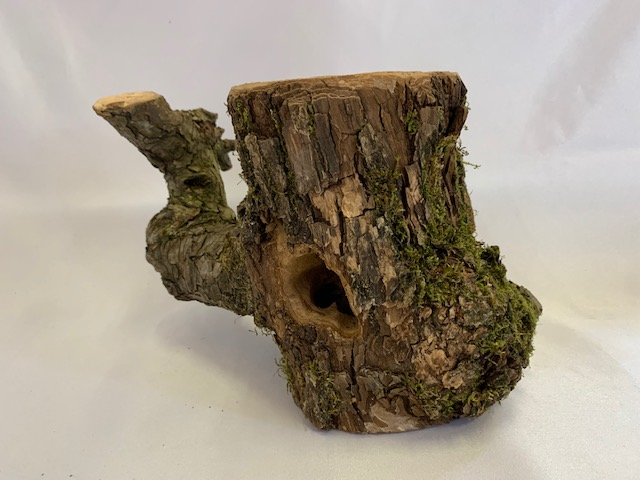 c-wood-k-7061710