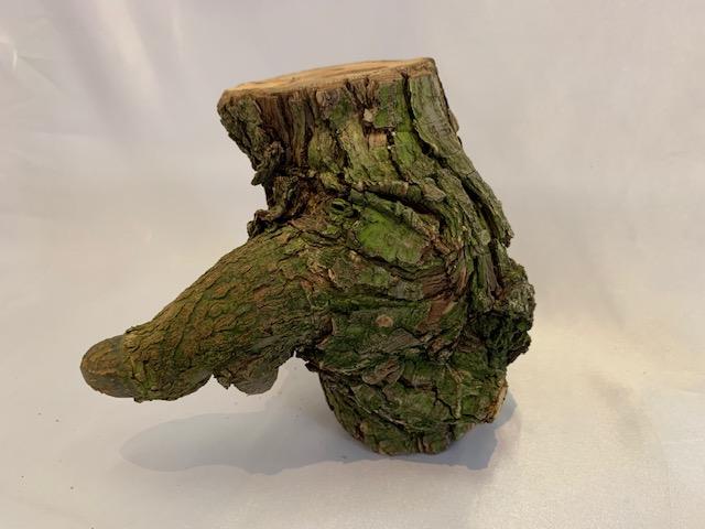 c-wood-L-7091001