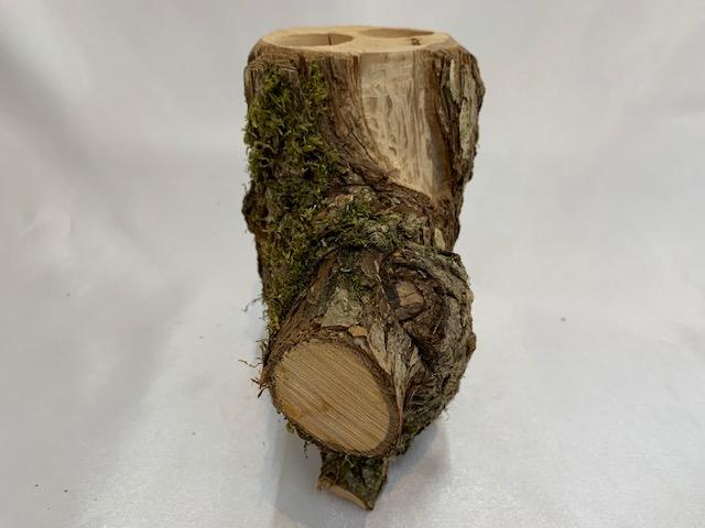 c-wood-L-7171725