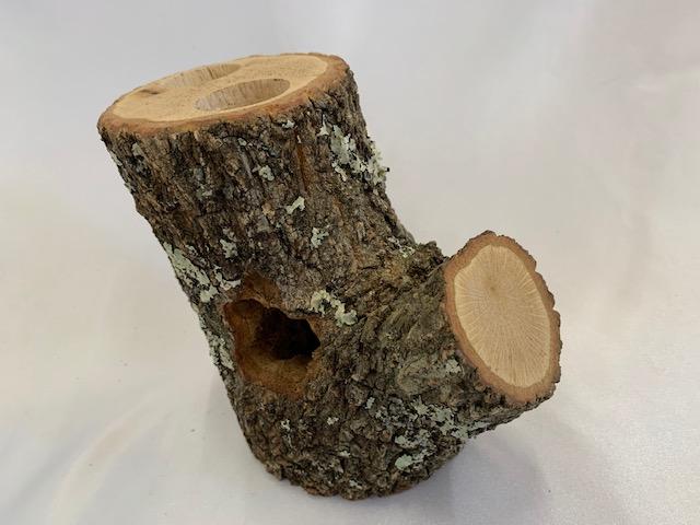 c-wood-L-8051440
