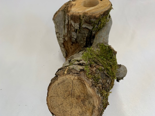 c-wood-k-8051514