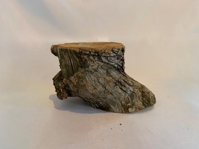 c-wood-m 8301535