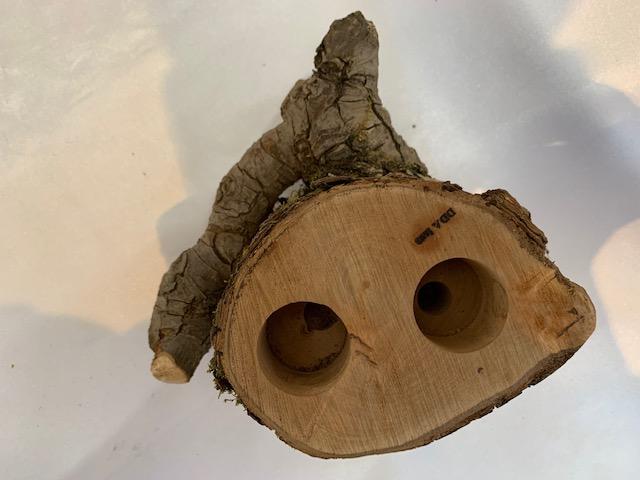 c-wood-L-10051531