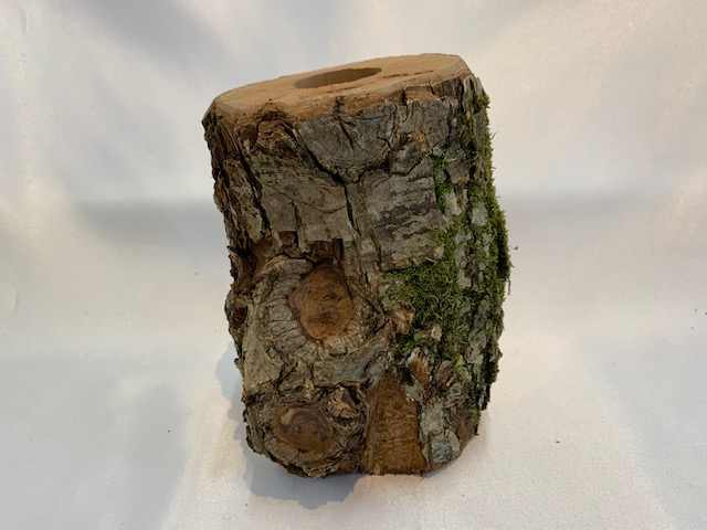c-wood-L-10051553